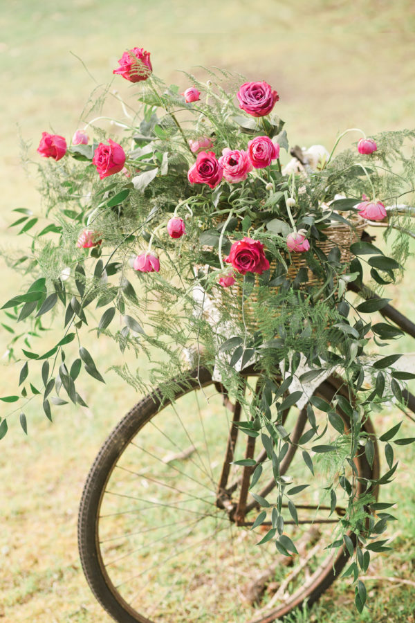 Vintage bicycle hire for wedding