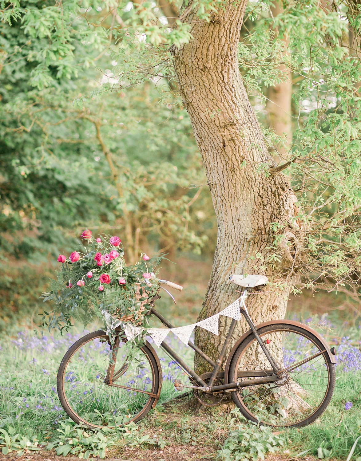 Wedding hire vintage bicycle in woodland