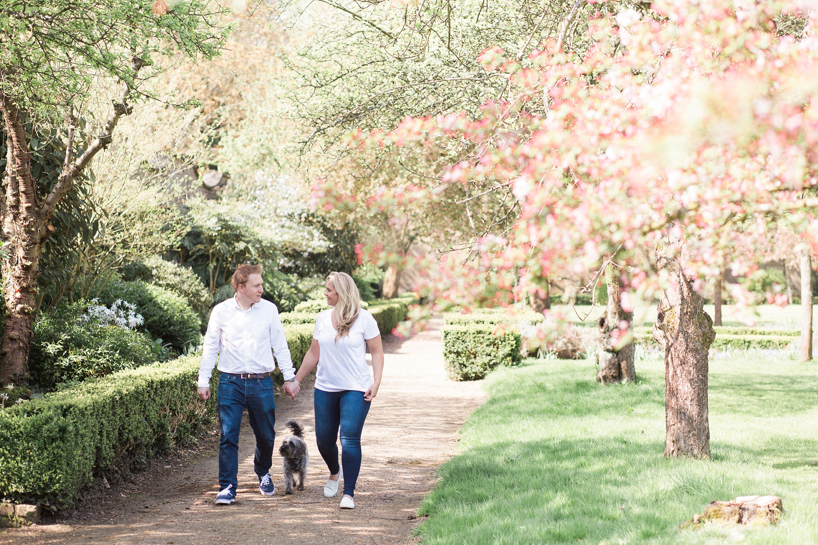 Engagement Shoot Spring Blossom Fine Art Wedding Photography couple walking with their dog, candid